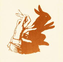 Rabbit300